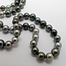 Tahitian Pearls showing the shades of grey from light to dark. R150,000